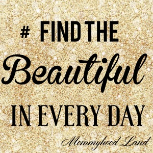 Find The Beautiful In Every Day
